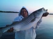 Fish104