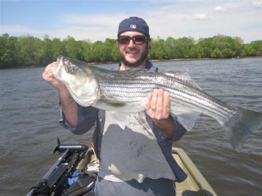 Fish145