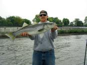 Fish152