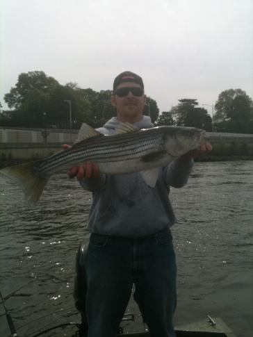 Fish157