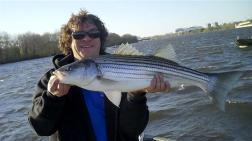 Fish167