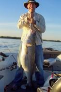 Fish47
