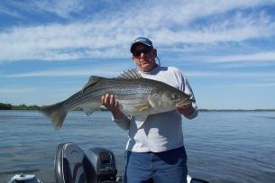 Fish56