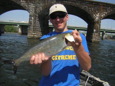 Fish82