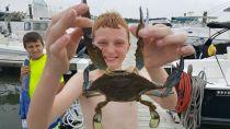 Sean July 2017 - Huge Crab